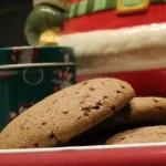 Gingerbread Cookies (paleo)