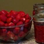 Confiture aux fraises (sans cuisson) Franden