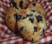 Muffins au yogourt et bleuets