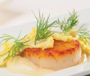 Pétoncle poêlé, purée de pommes de terre au Pied-De-Vent, chou-fleur mariné au cari