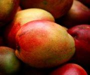 Pilons de poulet caramélisés au jus de mangue