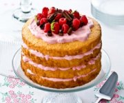 Succulent gâteau des anges aux petits fruits